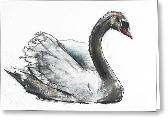 Birds Drawings Greeting Cards - Swan Greeting Card by Mark Adlington