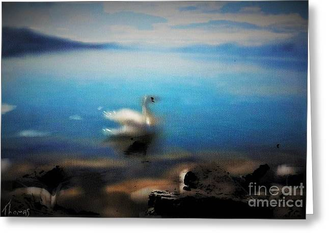 Swiss Mixed Media Greeting Cards - Swan Tranquility Greeting Card by Alex Thomas