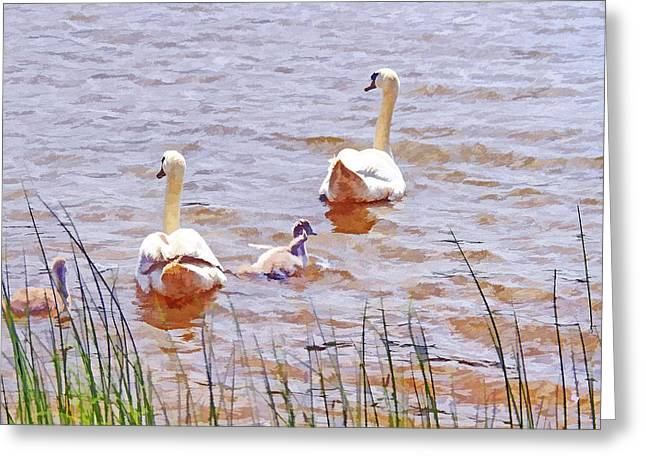 Landscape Posters Greeting Cards - Swans and babies painting Greeting Card by Geraldine Scull