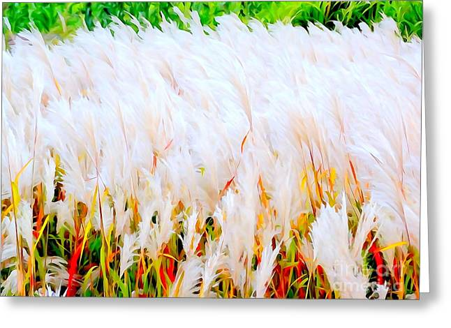 Abstract Digital Photographs Greeting Cards - Swaying Fall Grass Greeting Card by Ed Weidman