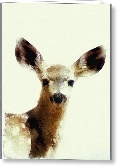 Startled Greeting Cards - Sweet Baby Face Greeting Card by Lynn Andrews