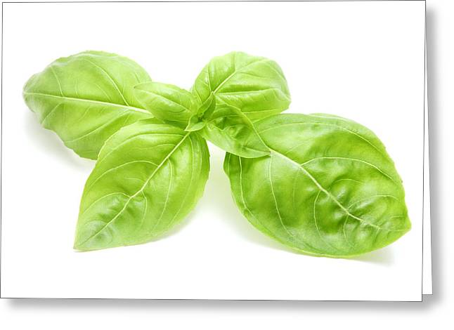 Cut-outs Greeting Cards - Sweet basil leaves Greeting Card by Fabrizio Troiani