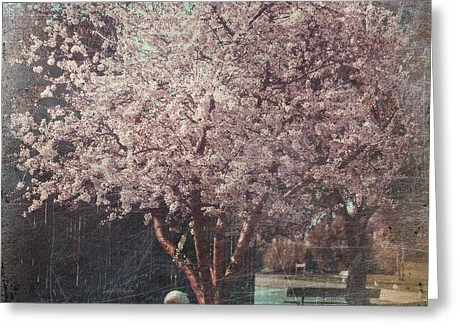 Sweet Kisses Under the Tree Greeting Card by Laurie Search
