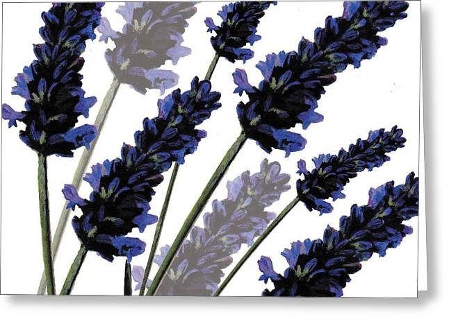Tasteful Digital Greeting Cards - Sweet Lavender Greeting Card by Sarah Hough