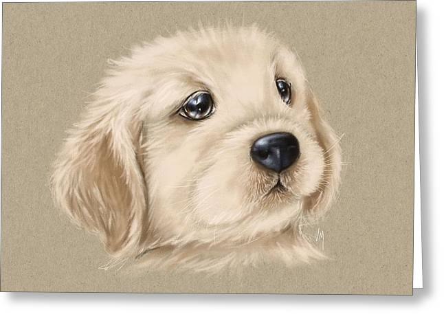 Dog Pencil Greeting Cards - Sweet little dog Greeting Card by Veronica Minozzi