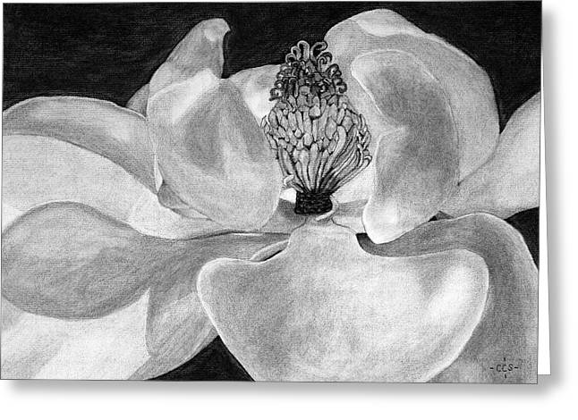 Sweet Magnolia Greeting Card by Christina Steward