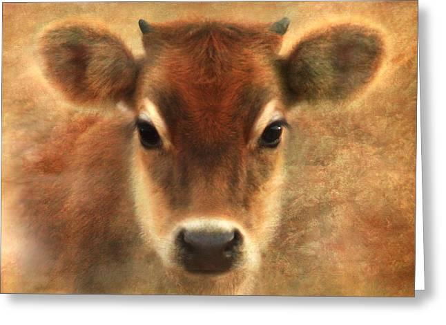 Jersey Cow Greeting Cards - Sweet Sweet Baby Greeting Card by Trudi Simmonds