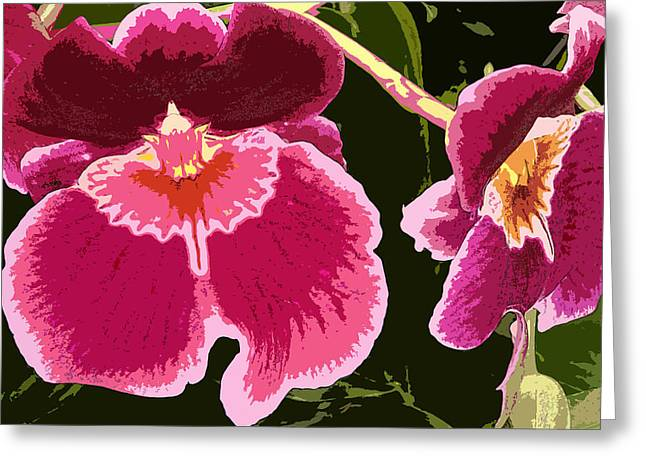 Ohio ist Digital Greeting Cards - Sweetheart Orchids Greeting Card by Mindy Newman