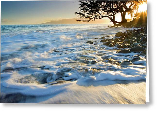 Swept out to Sea Greeting Card by Mike  Dawson