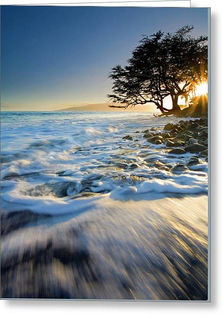 Lanai Greeting Cards - Swept out to Sea Greeting Card by Mike  Dawson