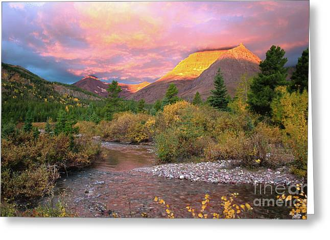Swiftcurrent Falls Greeting Cards - Swiftcurrent Sunrise Greeting Card by Dave Hampton Photography