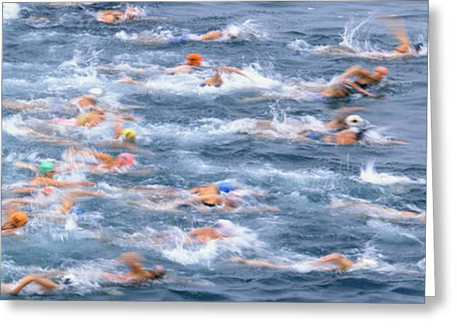 Swimmers Greeting Cards - Swimmers In Motion At The Start Greeting Card by Panoramic Images