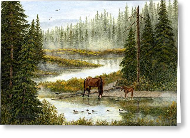 Horse Images Paintings Greeting Cards - Swimming Lessons Greeting Card by Ellen Strope
