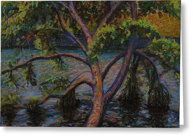 Swimming Tree Greeting Card by Art Nomad Sandra  Hansen