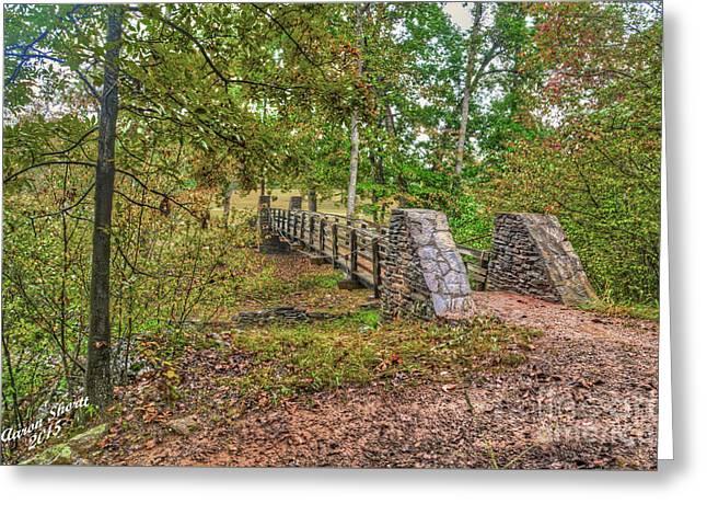 Woodland Scenes Greeting Cards - Swing Bridge Over Wayside Creek Greeting Card by Aaron  Shortt