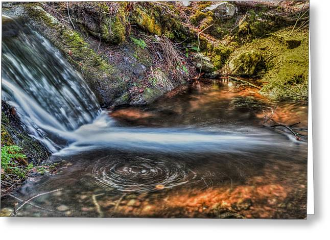 Buttermilk Falls Greeting Cards - Swirling life Greeting Card by Don Edwards
