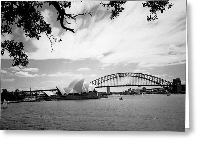 Wales Framed Prints Greeting Cards - Sydney Harbour Greeting Card by Heike Hellmann-Brown
