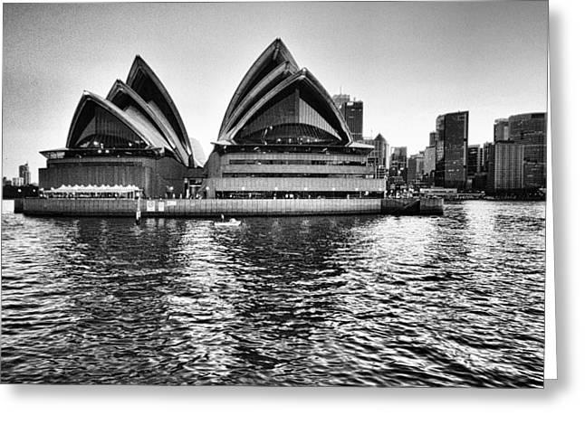 Sydney Opera House-black And White Greeting Card by Douglas Barnard
