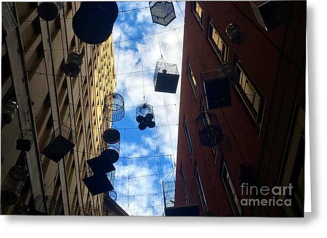 Sydney's Angel Place Greeting Card by Maddison May