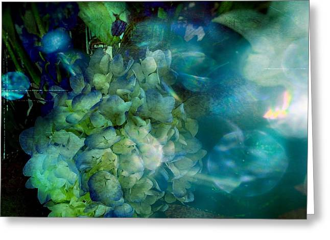 Photographs Of Flowers Greeting Cards - Symphony in Blue Greeting Card by Colleen Taylor