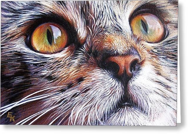 Cat Drawings Greeting Cards - Tabby look 2 Greeting Card by Elena Kolotusha