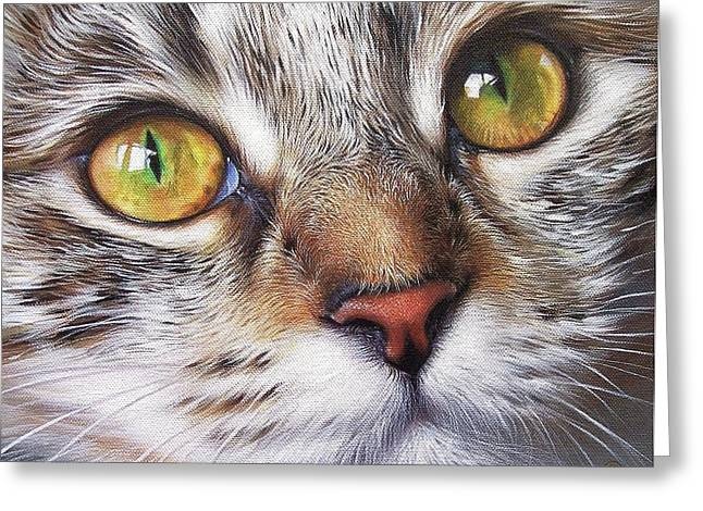 Close Up Paintings Greeting Cards - Tabby look Greeting Card by Elena Kolotusha