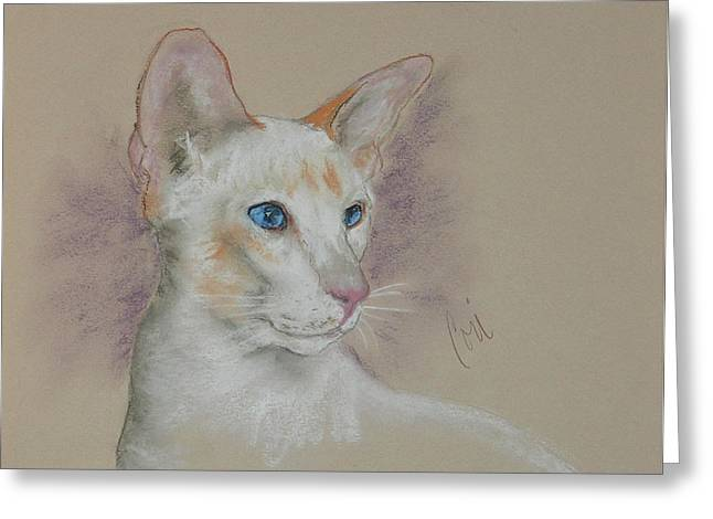 Red Point Siamese Greeting Cards - Tabea Greeting Card by Cori Solomon