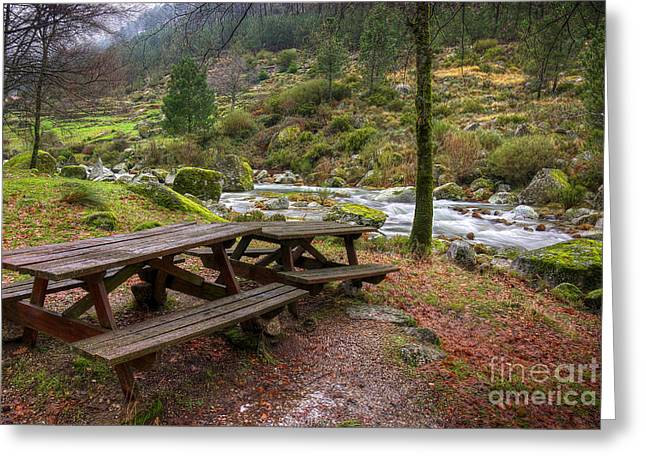 Winter Scenes Rural Scenes Photographs Greeting Cards - Tables by the River Greeting Card by Carlos Caetano