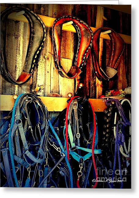 Shed Digital Greeting Cards - Tack Room Greeting Card by Christine Zipps