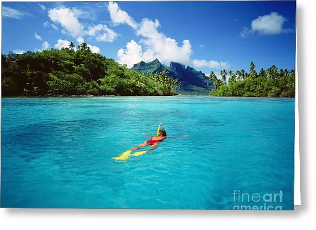 Snorkel Greeting Cards - Tahiti, Bora Bora Greeting Card by Ron Dahlquist - Printscapes