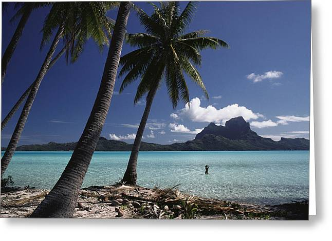 Enjoying Greeting Cards - Tahiti View Greeting Card by David Cornwell/First Light Pictures, Inc - Printscapes