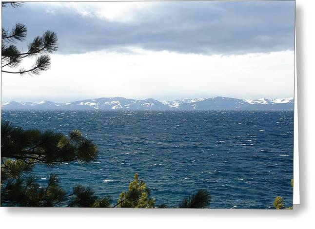 Winter Storm Greeting Cards - Tahoe Greeting Card by Kami Gauvey