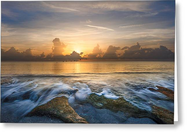 On The Beach Greeting Cards - Take Flight Greeting Card by Debra and Dave Vanderlaan