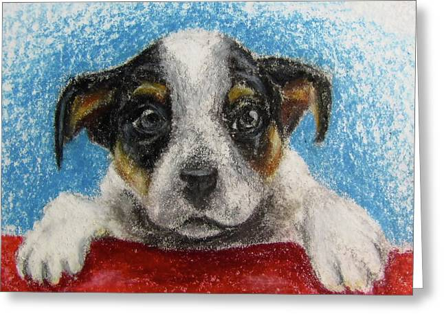 Puppies Pastels Greeting Cards - Take Me Home Greeting Card by Anna Hagee
