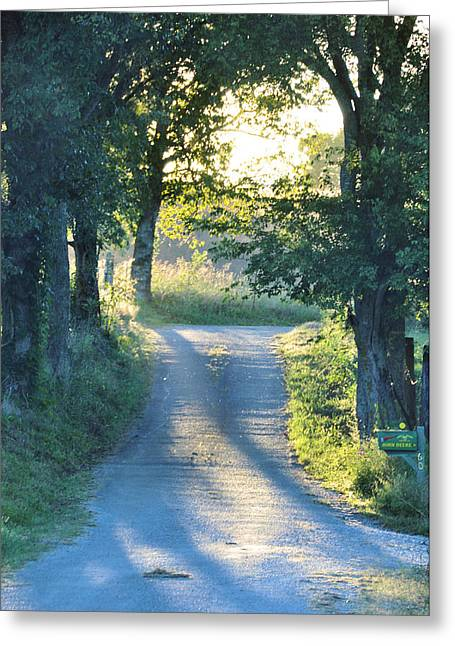 Take Me Home Greeting Card by Jan Amiss Photography