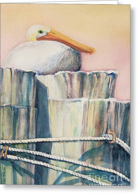 Sea Birds Greeting Cards - Taking A Break Greeting Card by Sharon Nelson-Bianco
