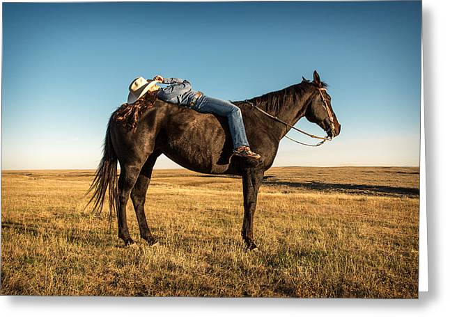 Taking A Snooze Greeting Card by Todd Klassy