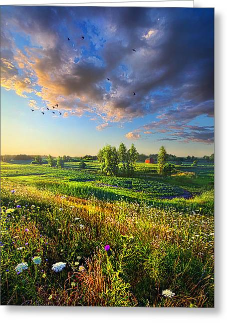 Wisconsin Barn Greeting Cards - Taking a Time Out Greeting Card by Phil Koch