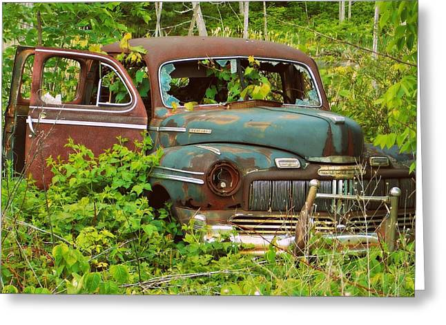 Rusted Cars Greeting Cards - Taking Nature for a Ride Greeting Card by Belinda Olivastri