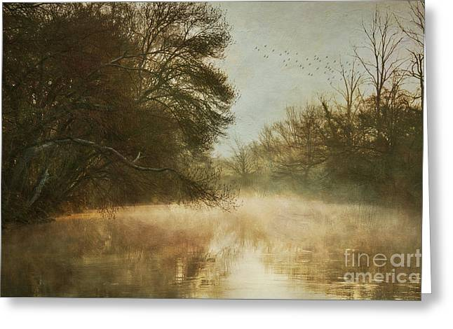 Tales From The Riverbank Greeting Card by Robert Brown