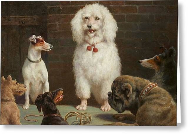 Talking Dogs Greeting Card by Hans Sperling