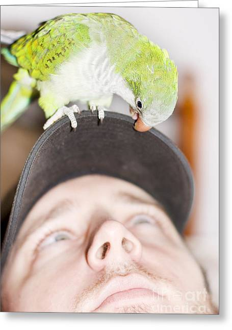 Talking To The Animals Greeting Card by Jorgo Photography - Wall Art Gallery