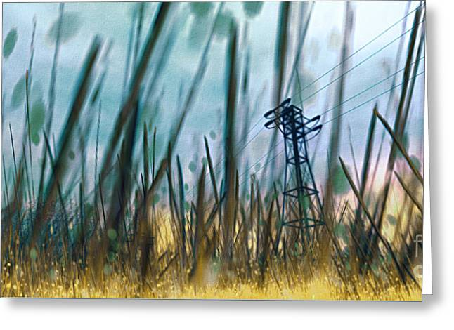 Unset Greeting Cards - Tall Grass II Greeting Card by Carol Pietrantoni