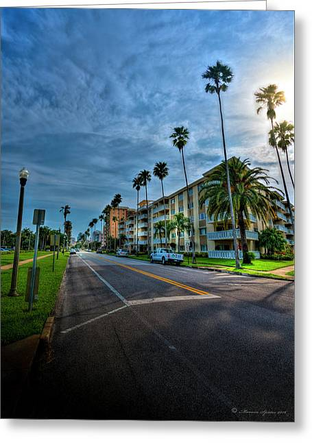 Tall Palms Greeting Card by Marvin Spates