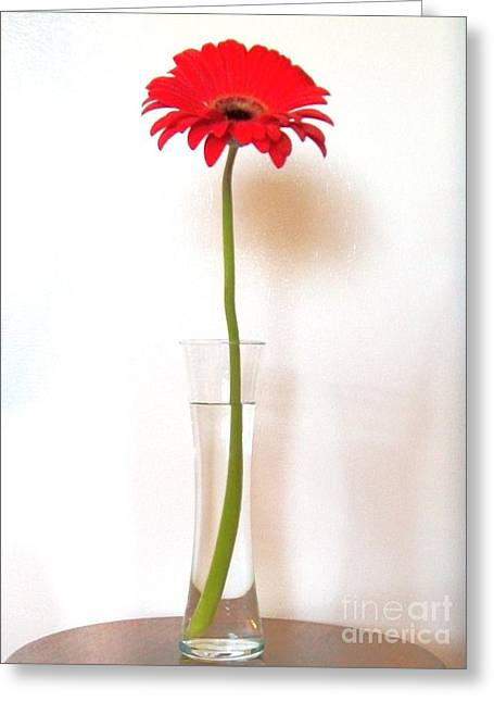 Best Sellers -  - Glass Vase Greeting Cards - Tall Red Greeting Card by Marsha Heiken