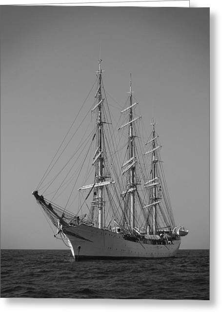 Tall Ships Greeting Cards - Tall Ship Denmark  Greeting Card by Dustin K Ryan
