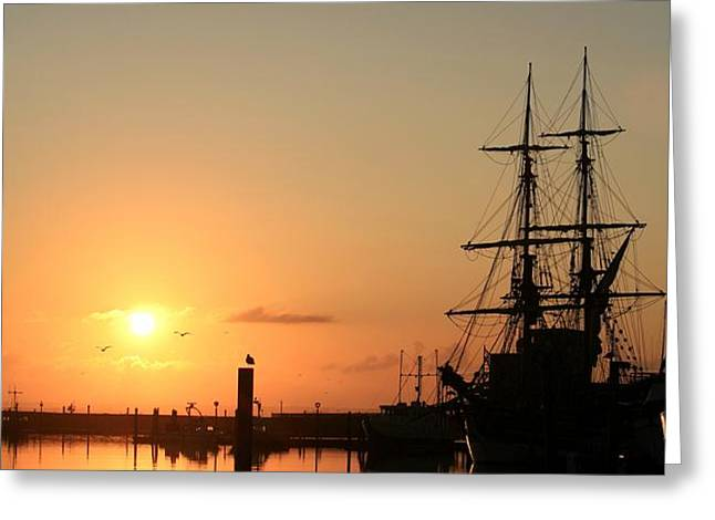 Tall Ship Lady Washington at Dawn Greeting Card by Mike Coverdale