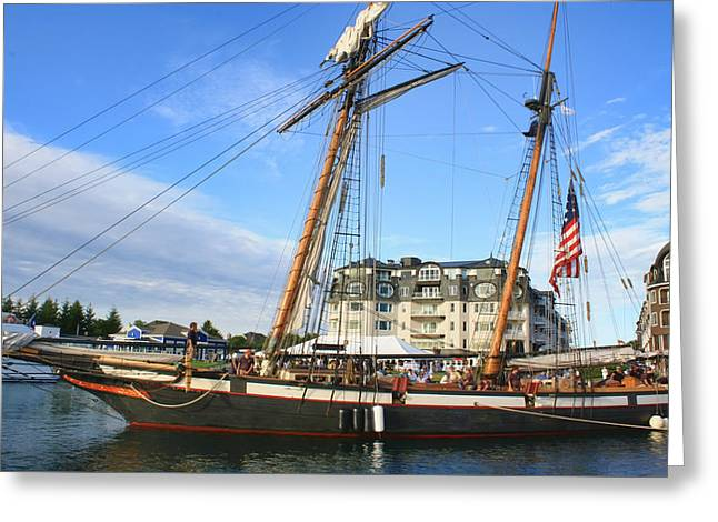 Tall Ship Greeting Cards - Tall Ship Lynx Greeting Card by Pat Cook