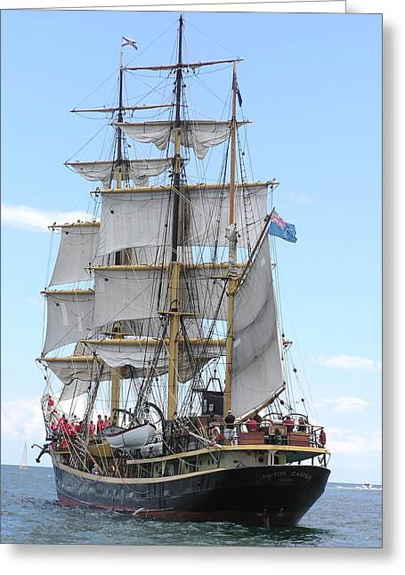 Tall Ships Greeting Cards - Tall Ship - Picton Castle - in Newport RI Greeting Card by Anne Quinn