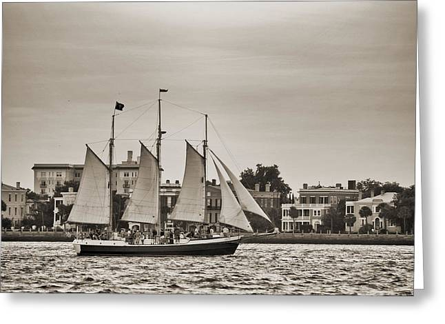 Tall Ships Greeting Cards - Tall Ship Schooner Pride off the Historic Charleston Battery Greeting Card by Dustin K Ryan